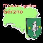 miasto i gmina Górzno