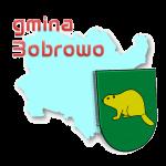 gmina Bobrowo