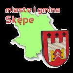 miasto i gmina Skępe