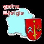 gmina Wielgie